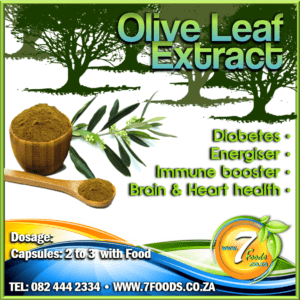 Olive Leaf Extract Powder 100g