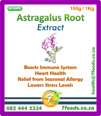 Astragalus Root Extract 100g